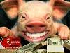 Часы и ремень у лидера современных коммунистов Симоненко стоят 150 тыс. долларов